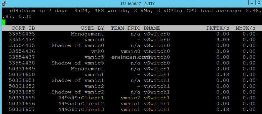 nic-teaming-esxi (3)