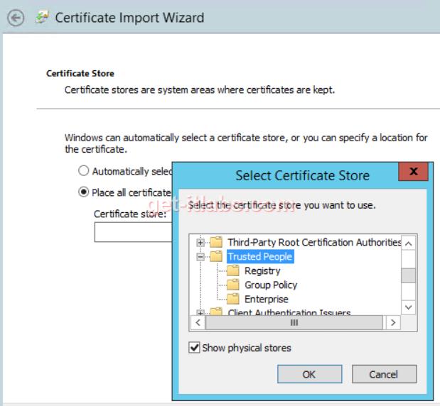 citrix-sertifika-problemi (4)
